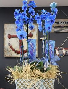 4 dallı özel mavi orkide  Ankara çiçek siparişi vermek