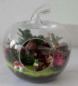 Elma cam orta boy terrarium teraryum  Ankara çiçek gönderme