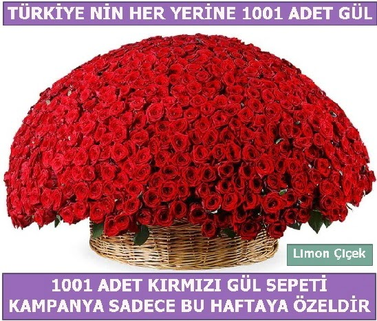 1001 Adet kırmızı gül Bu haftaya özel  Ankara hediye çiçek yolla
