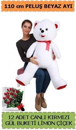 110 cm beyaz kocaman peluş ayı ve 12 gül  Ankara çiçek gönderme