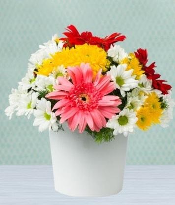 Seramik Vazoda Gelbera ve Papatya  Ankara çiçek gönderme