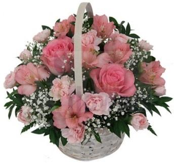 Karışık mevsim sepeti  Ankara İnternetten çiçek siparişi