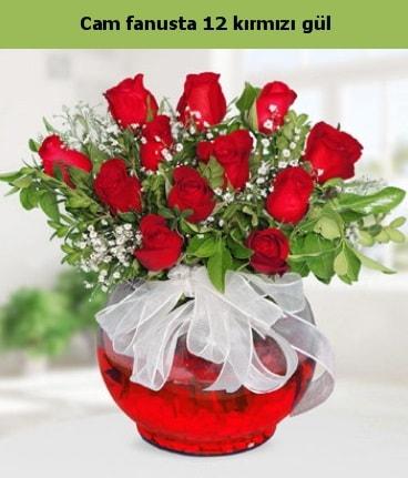 Cam içerisinde 12 adet kırmızı gül  Ankara internetten çiçek satışı