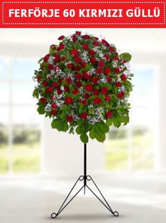 60 Adet kırmızı gülden ferförje  Ankara ucuz çiçek gönder