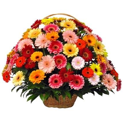 Karışık renkli büyük gerbera sepet aranjmanı  Ankara çiçek gönderme sitemiz güvenlidir