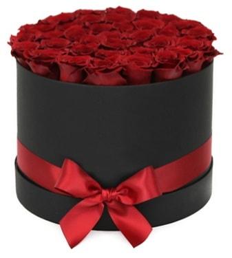 Siyah Kutuda 25 adet kırmızı gül  Ankara çiçek gönderme sitemiz güvenlidir