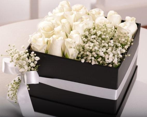 Kutu içerisinde 19 beyaz gül ve cipsofilya  Ankara çiçek , çiçekçi , çiçekçilik