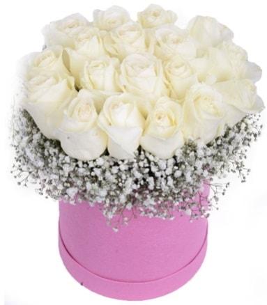 Renkli kutuda 19 adet beyaz gül  Ankara internetten çiçek satışı