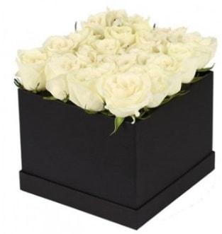 Kare kutuda 19 adet beyaz gül aranjmanı  Ankara çiçekçi telefonları