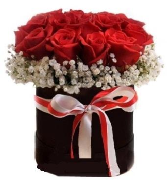 Siyah kutuda 23 adet kırmızı gül tanzimi  Ankara çiçek gönderme sitemiz güvenlidir